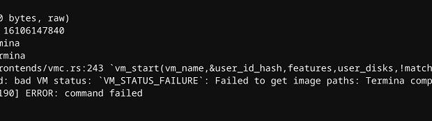 IdeaPad Duet ChromebookのLinuxが起動できなくなりました