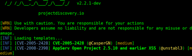 IdeaPad Duet ChromebookのLinuxにNucleiをインストール